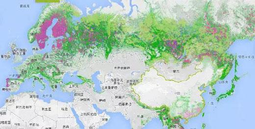谷歌日本东京地图